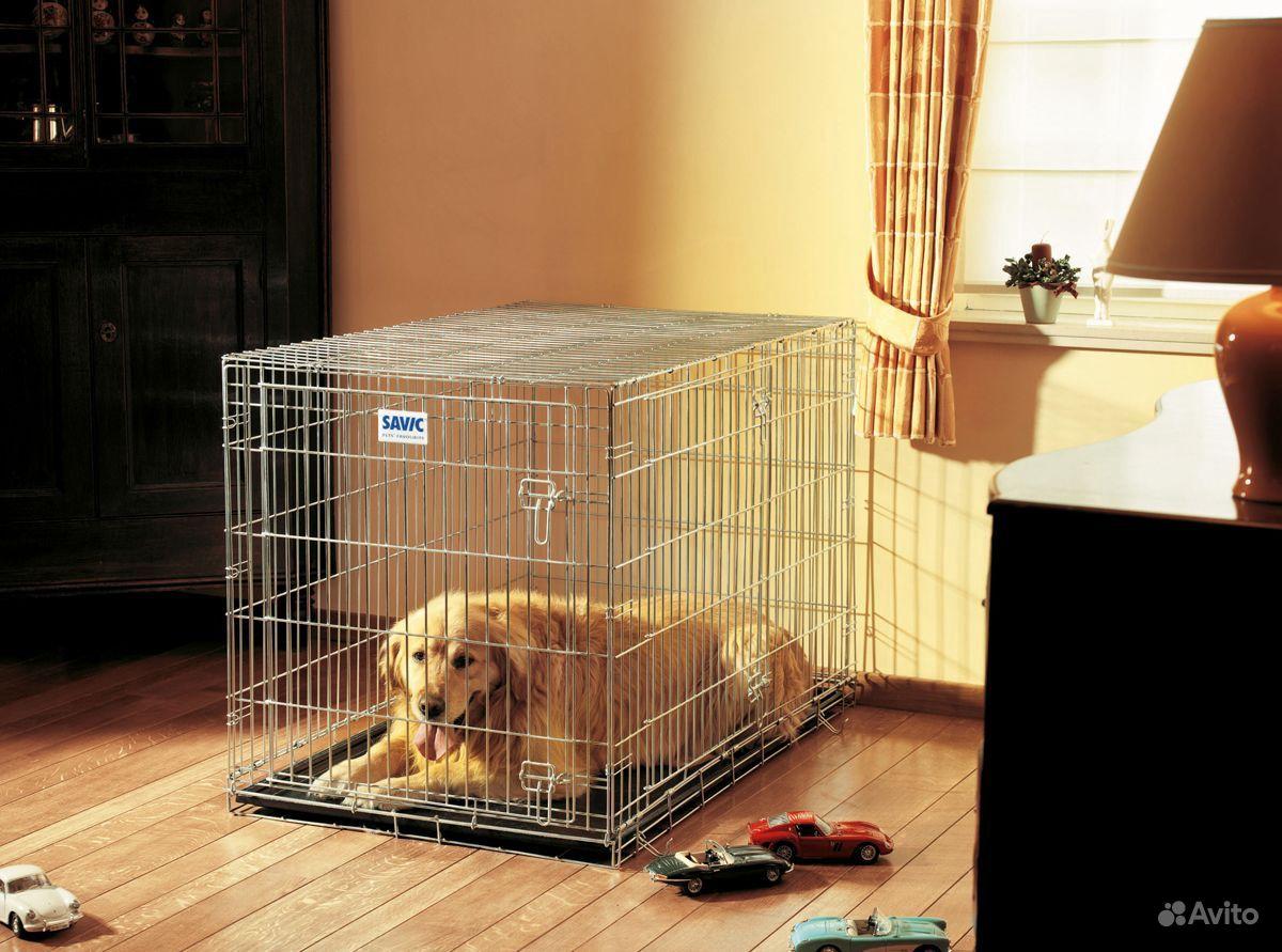 Самая большая клетка для собаки