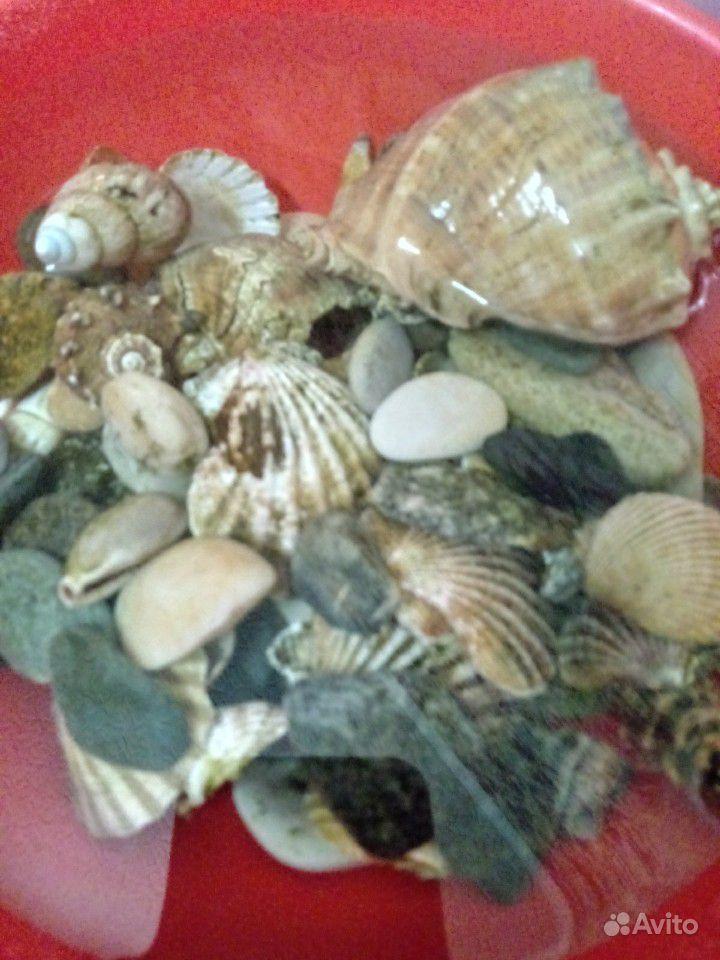 Продам аквариум купить на Зозу.ру - фотография № 8