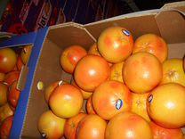Грейпфрут сорта Дункан