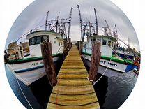 Рыбий глаз для смартфона (fishEye) — Фототехника в Ижевске